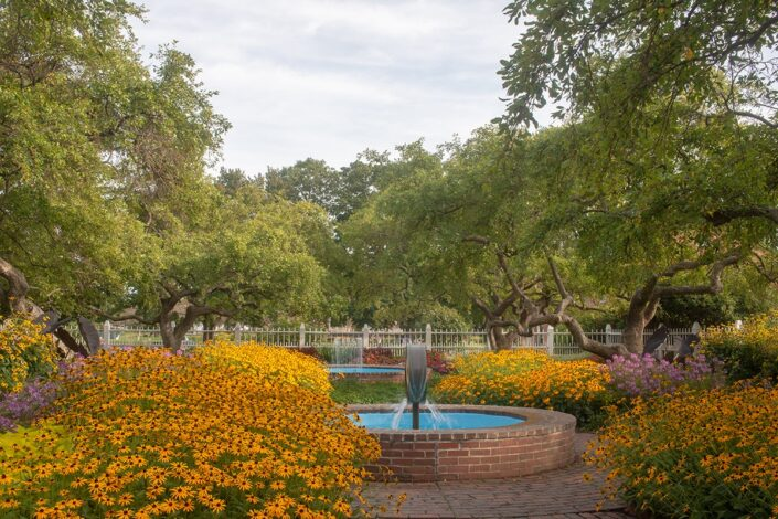 Late summer flowers in garden at Prescott Park Portsmouth, NH